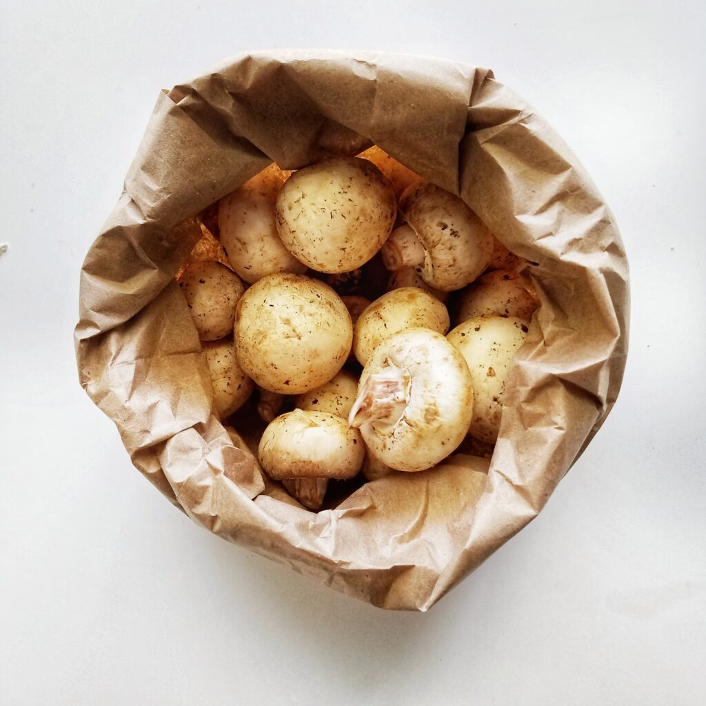 photo of mushrooms in brown paper bag from mandyoliveco on instagram